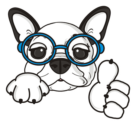 bulldog puppy: french bulldog puppy wearing glasses shows a gesture of victory