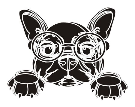 bulldog puppy: french bulldog puppy with glasses in black colors with white lines