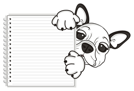 bulldog puppy: french bulldog puppy holding a blank notebook Stock Photo