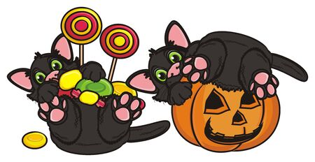 halloweens balck cats with candy and pumpkin Stock Photo