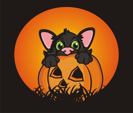 balck cat peek up from the pumkin next to the moon