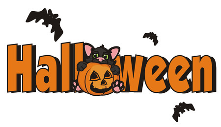 october 31: word Halloween with black cat in pumpkin and many bats Stock Photo