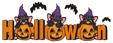 october 31: bats and cats near the word Halloween