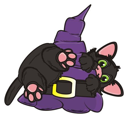 big hat: black kitten climb on the big hat