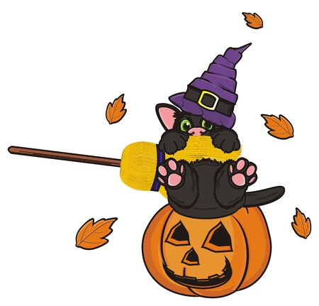 october 31: black cat sit in pumpkin with broom and leaves fly around