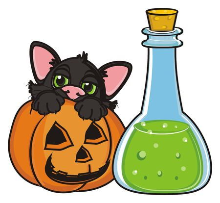 october 31: black cat sit in pumpkin next to the bottle of poison