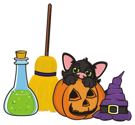 31: black cat with elements of halloween Stock Photo