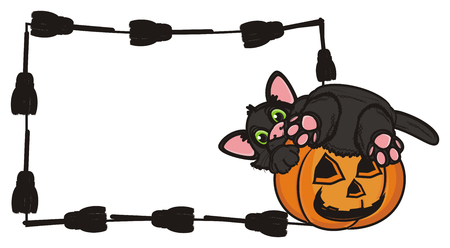 clean paper with frame of brooms next to the black cat in pumpkin