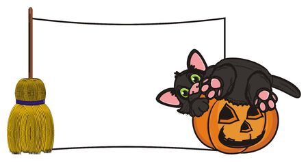 october 31: black cat in pumpkin sit next to the clean plate and broomstick