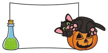 31: black cat in pumpkin sit next to the bottle of poison and blank paper Stock Photo