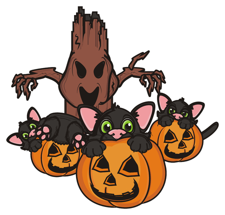 october 31: three cats sits on the pumpkins next to the evil tree Stock Photo