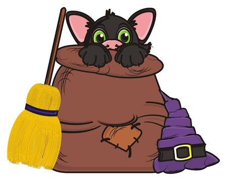 stick out: muzzle of black cat peek up from the bag next to the witchs hat and broom Stock Photo