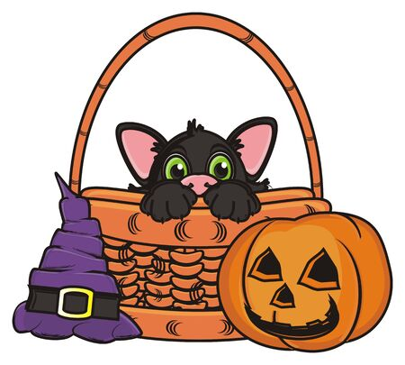 peek: snout of black cat peek up from the basket next to the hat and pumpkin
