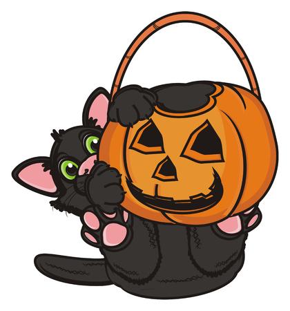 31: black cat hold an empty basket of pumpkin