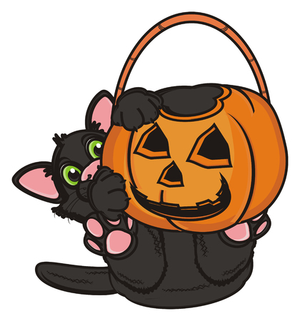 empty basket: black cat hold an empty basket of pumpkin