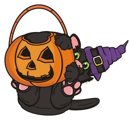 empty basket: black cat in hat hold an empty basket of pumpkin
