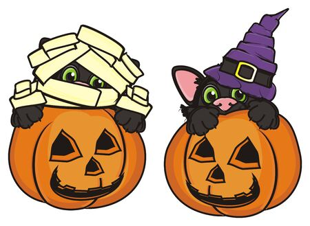 stick out: mummy cat and cat in witchs hat sits in pumpkins