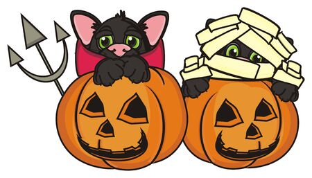 stick out: black cat in devil suit and cat mummy sits in pumpkins