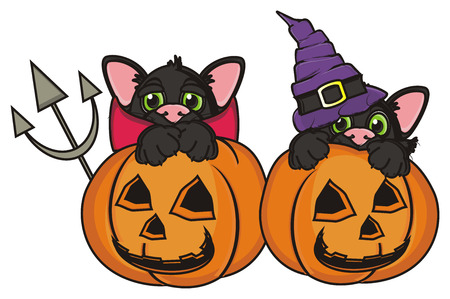 stick out: two black cats in different suits sit in pumpkin