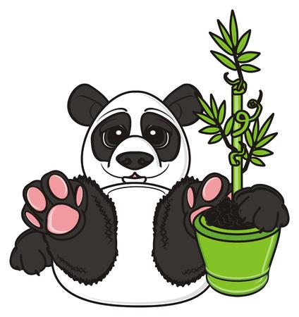 hold: panda hold abamboo plant