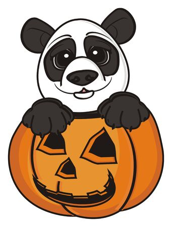 stick out: face of panda stick out from the pumpkin