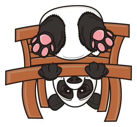 upside: panda sit upside down on the wooden banch