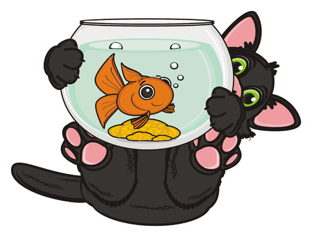 stick out: black cat lying on his back and hold aquarium with goldfish