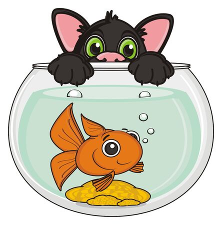 stick out: black cat stick out from the aquarium with goldfish