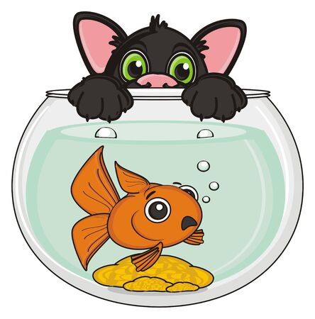 stick out: muzzle of black cat peek up from the aquarium with goldfish