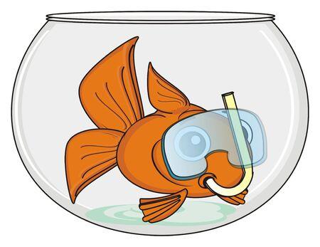 swim mask: goldfish in mask swim an empty aquarium