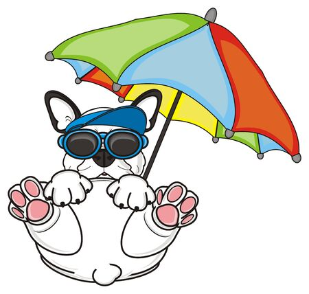 cool french bulldog in black sunglasses and blue cap lying on his back underan umbrella Stock Photo