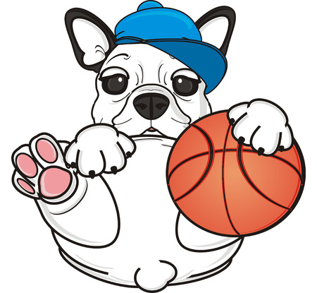 white puppy of french bulldog in cap want play to basketball