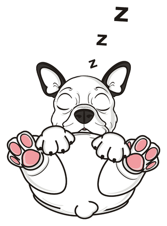 White French Bulldog Sleeping And Letters Z Fly Around Him Stock Photo