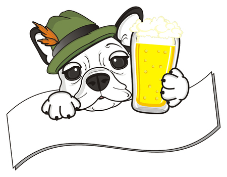 stick out: muzzle of french bulldog with beer peek up from the clean ribbon
