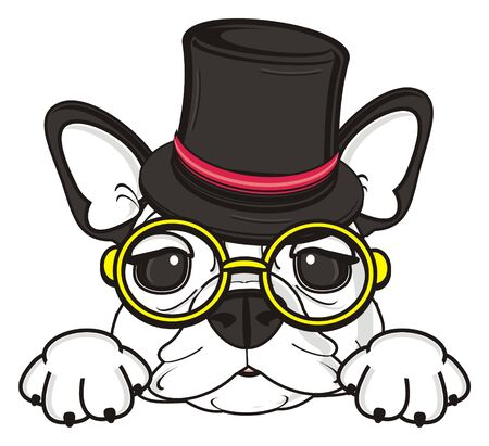 muzzle: muzzle of french bulldog gentlman in hat and glasses