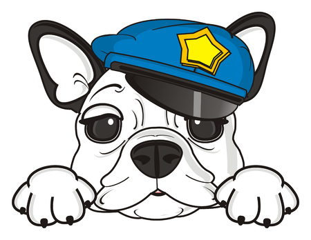 snout: snout of french bulldog in police cap Stock Photo