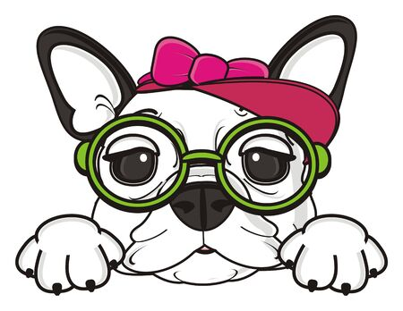 cite face of french bulldog girl in pink cap with bow and round glasses