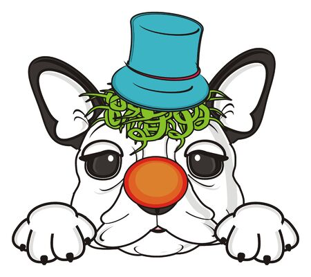 muzzle of french bulldog in clown hat with orange nose Stock Photo