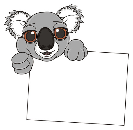 stick out: muzzle of koala peek up from clean banner and show gesture class