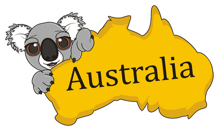 stick out: muzzle of koala peek up from Australian continent and look at them Stock Photo
