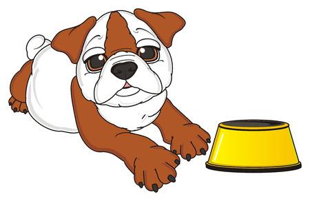 empty bowl: bulldog ask feed him near an empty bowl