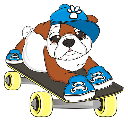 bulldog boy in blue cap and shoes lying on the skateboard