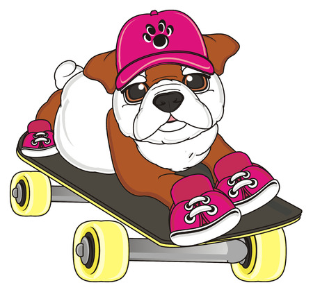 bulldog girl in cap and shoes riding on the skateboard Stock Photo