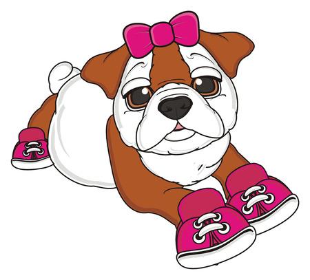 moño rosa: bulldog chica con el arco rosado y los zapatos