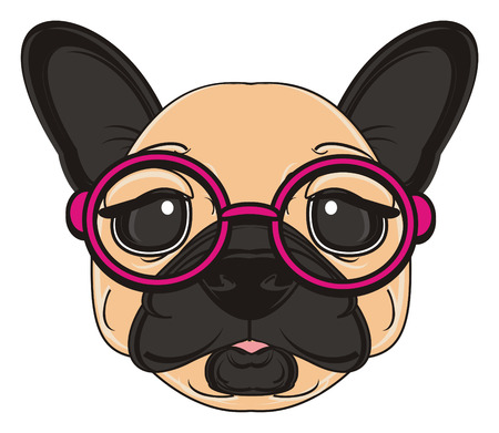 snout: snout of beige french bulldog in pink glasses
