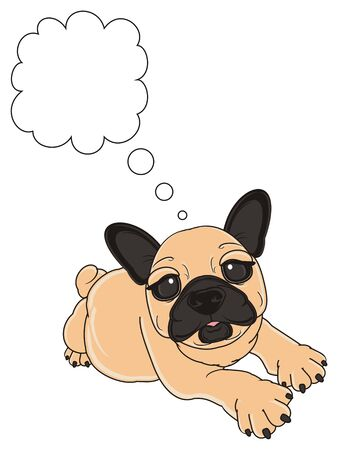 beige french bulldog lying near the clean call out Stock Photo