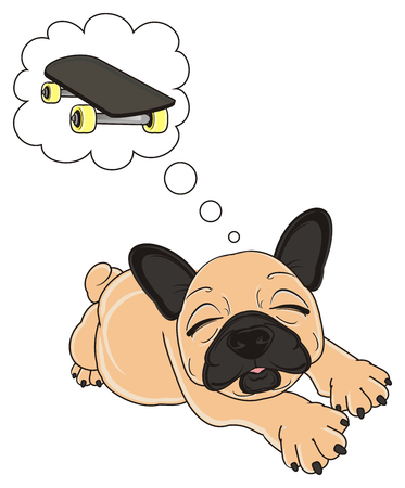 beige french bulldog lying and dreaming to ride on a skateboard
