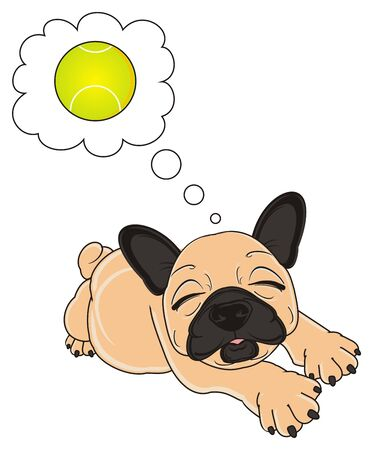 beige french bulldog lying and dreaming about a tennis ball