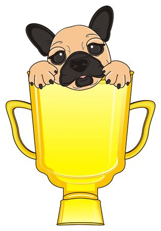 legs up: muzzle of beige french bulldog peek up from golden cup