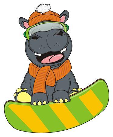 snowboard: hippo riding on the snowboard Stock Photo